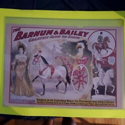 Ringling Bros And Barnum And Bailey Circus Poster 1903 Original Vintage