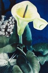 Gh Rothe Cala Lily Mezzotint On Paper Art 1984 Hand Singed Limited Edition