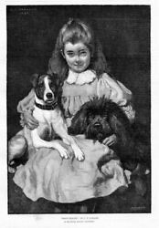 DOGS ENGLISH TERRIER AND FRENCH POODLE YOUNG GIRL WITH HER BOSOM FRIENDS VINTAGE
