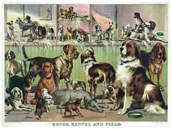 4453.house.kennel And Field.various Dogs.poster.decor Home Office Art