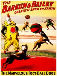9576.barnum And Bailey.marvelous Foot-ball Dogs.poster.decor Home Office Art