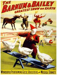 9589.barnum And Bailey.clowns Play With Fowl.donkey.poster.decor Home Office Art