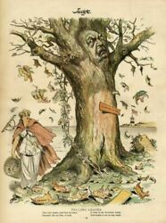 Grover Cleveland As A Tree With Falling Leaves Irish Vote Knights Of Labor Rake