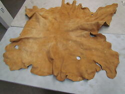 54 X 50 Native American Home Tanned Moose Hide Light Brown