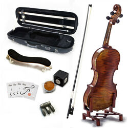 Sky 4/4 Size Vn521 Violin Euro Performer Series For Professional Antique Style
