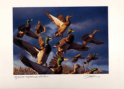 Oregon 17 2000 State Duck Stamp Print Med Ed + 2 Stamps By Robert Steiner