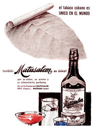 85.decoration Poster.graphics To Decorate Home Office.tobacco Leaf-matusalem Ad.