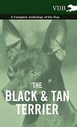 Black and Tan Terrier - a Complete Anthology of the Dog - (English) Hardcover Bo