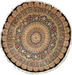 Palace Dome Rug  8 x 8  Home Decor  Area Rugs