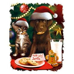 For Santa Cookies Cat And Dog In Santa Hats Tshirt Sizes/colors