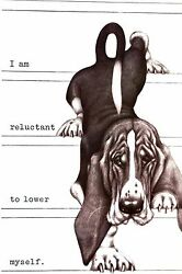 Boswell PROUD BASSET HOUND Will Not Lower Himself 1958 Vintage Dog Print Matted