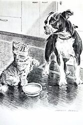 Morgan Dennis 1946 BOSTON TERRIER PUPPY and KITTEN CAT Vintage Matted Dog Print