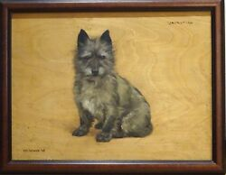 Early 20th Century Cairn Terrier Dog