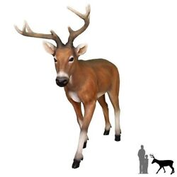 Deer Standing W Antlers Young Life Size Statue Christmas Animal Decor Forrest