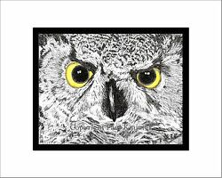 Great Horned Owl Print Note Card Pen And Ink Matted