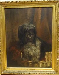 Large 19th Century English Tibetan Terrier Dog Portrait Antique Oil Painting