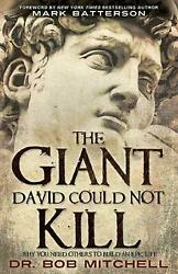 The Giant David Could Not Kill Why You Need Others To Build An Epic Life By Dr