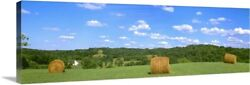 Dried Round Grass Hay Bales In The Field Canvas Wall Art Print Countryside Home