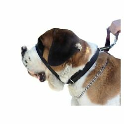 Canny Colossus No-Pull Black Collar for Large Breeds Giant Dogs 23