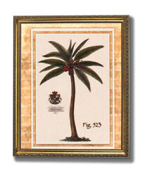 Tropical Palm Tree Room Landscape Wall Picture Gold Framed Art Print