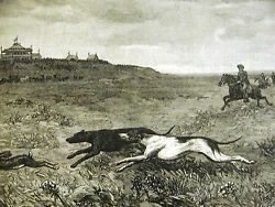 Great Bend Kansas COURSING HUNTING JACK RABBITS DOGS HOUNDS 1886 Print Matted