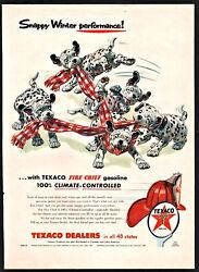 1955 Texaco Dalmatian Puppies Wrapped Up In Winter Scarf Ad