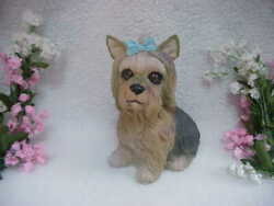 Yorkshire Terrier Dog - Large Heavy