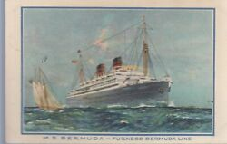 Post Card-m.s. Bermuda Furness Line-----22
