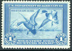 Rw1 1934 Federal Duck Stamp Grade 85 Xf Nh. Great Looking Ding Darling Stamp