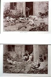 Pair of Matted DOG Prints 1886 GOING GOING GONE - 3 Dogs Fighting Over Chicken