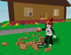 Islands - Wood You Choose The Type - Roblox In-game Item