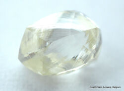 Ideal For Rough Diamond Jewelry Natural Diamond Out From A Diamond Mine