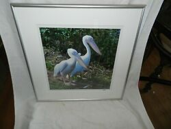 2 Pelican Colored Framed Picture Marked Nsm 16.25 X 16.25outside