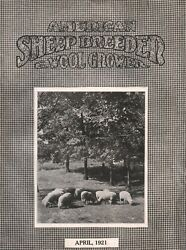 The American Sheep-breeder And Wool-grower Illustrated Magazine April 1921
