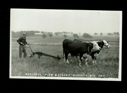 Rppc Augusta,wi Wisconsin National Plow Matches 1953 Pair Oxen Pull Plow
