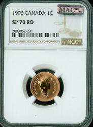 1996 Canada Cent Ngc Mac Sp70 Finest Graded Rare Spotless 1 In A 1,000