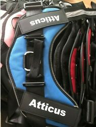Personalized Dog Harness 4 Colors 5 Sizes Free Shipping From Pittsburgh Pa