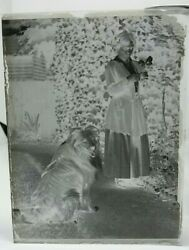 Antique Negative Glass Plate Beautiful Lady With Lassie Dog Picking Flowers 1910