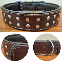 Studded Dog Collar 2quot; Wide Genuine Leather For Large Breeds Heavy Duty Pit Bull