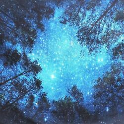 2021 Night Forest Tapestry Starry Sky Wall Hanging Art Tree Bedspread Home Decor