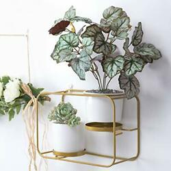Wall Planters for Indoor Plants Modern Design Wall Plant Holder with 2 Cerami...