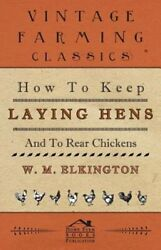 How To Keep Laying Hens And To Rear Chickens By W M Elkington New