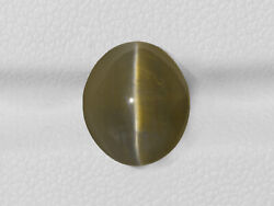 Igi Certified India Chrysoberyl Cat's Eye 6.75 Cts Natural Untreated Oval