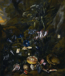 Oil Painting Still Life With Flowers, Mushrooms, Butterflies, A Snake @n6488