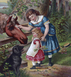 Perfact 30x30 Oil Painting Handpainted On Canvasladychild Horse Dog@n3656