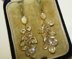 Magical, Vintage Or Antique 14 Ct Gold Bunch Of Lush Moonstones Earrings