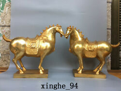 12.4 China Old Antique Dynasty A Pair Exquisite Bronze 24k Gilt Horse Statue
