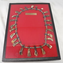 Atq Buffalo Tooth Necklace Northern Plains Sioux Style Old Trade Beads 1800and039s