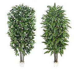 2 Potted 7' Real Wood Artificial Ficus + Mango Tree Décor