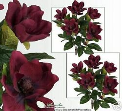Two 2and039 Magnolia Silk Flowers Artificial Plants 305bd